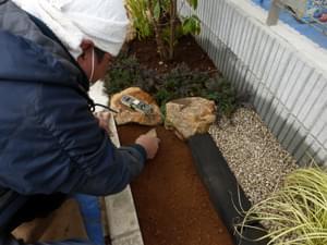 新たに客土された堆肥入りの赤土