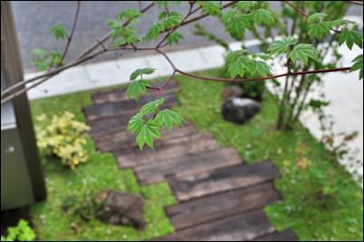 玄関アプローチも植栽デザインでおしゃれなお庭に