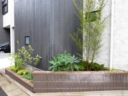 花壇の中で植栽デザインを考える