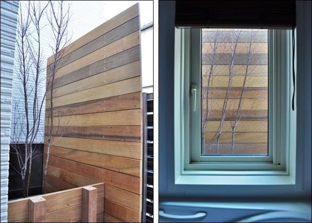 浴室の目隠しとなるウッドフェンスとコハウチワカエデ