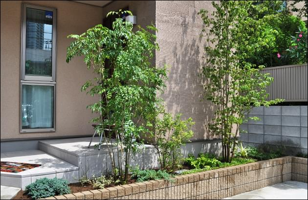 シンボルツリーと目隠し植栽が共存する花壇