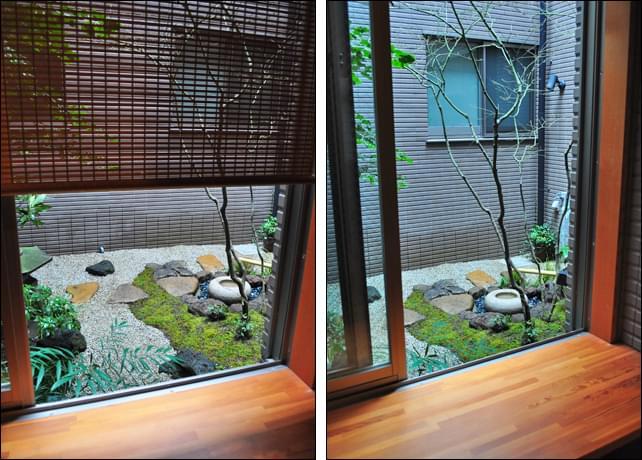 採光を妨げないコハウチワカエデが主木の坪庭
