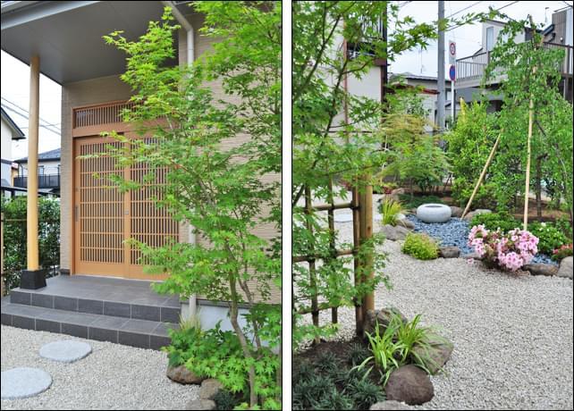 玄関に添えられるイロハモミジの風情