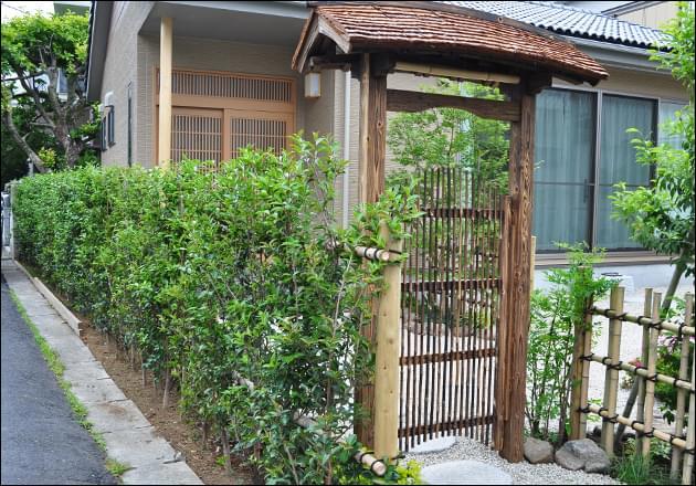 門へ自然につながる生垣
