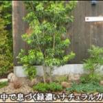 花壇の中で息づく洋風ナチュラルな小庭-練馬区S様邸