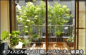 バルコニーへのプランター植栽で美しい目隠しを-港区マンションN様邸