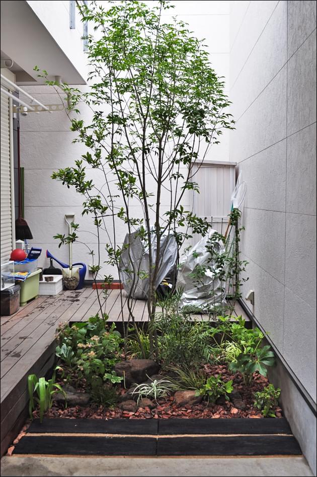 周囲の雑木と馴染ませるシンボルツリー