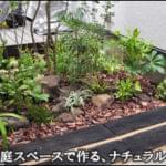 小さな庭でデザインする、雑木と下草のナチュラル感-文京区A様邸