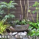 日陰で水鉢の風情を感じる和風ナチュラルな小庭-台東区O様邸