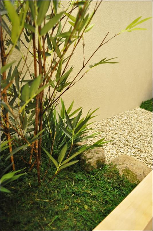 繁殖するハイゴケに飲まれる石を再現