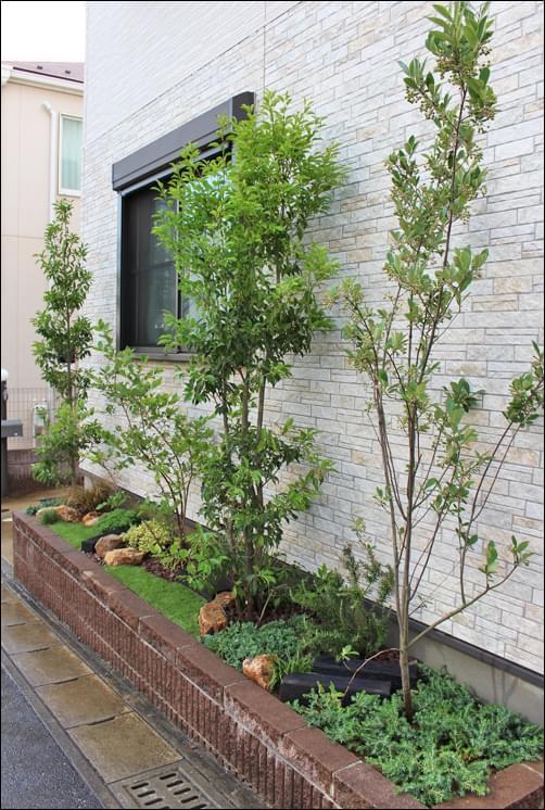 様々な植木の共演で作る風景