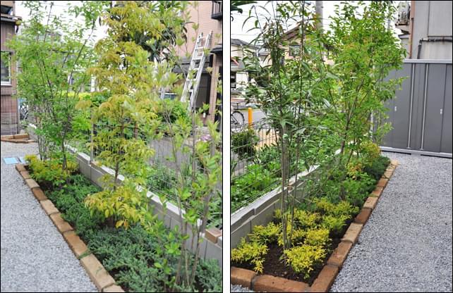 植栽エリアと雑草対策(砕石)エリアを区分け
