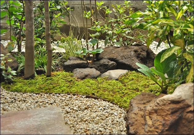 小振りの庭石で作る立体感