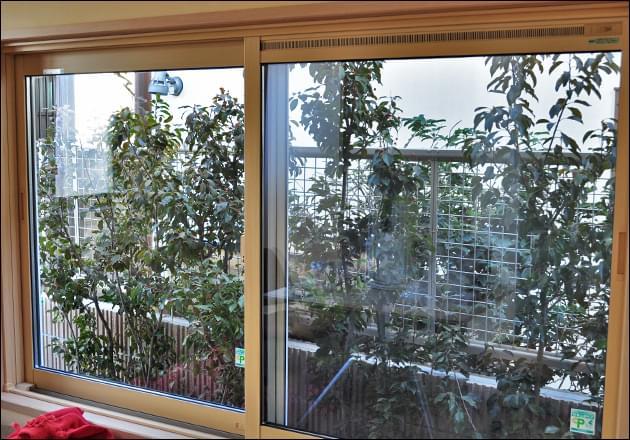 診療室から眺める植栽のグリーン