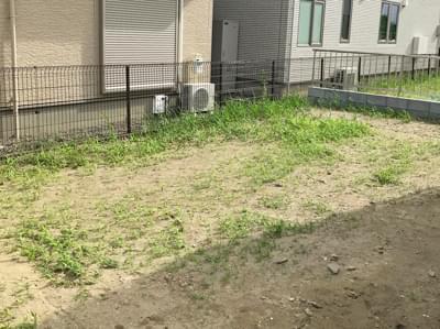施工前のお庭。強靭な雑草が確認されます。