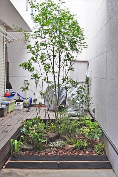 小面積で作庭する自然な風景:文京区A様邸