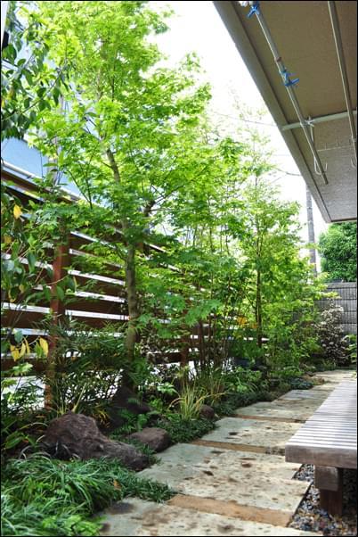 狭小部で考える雑木の庭