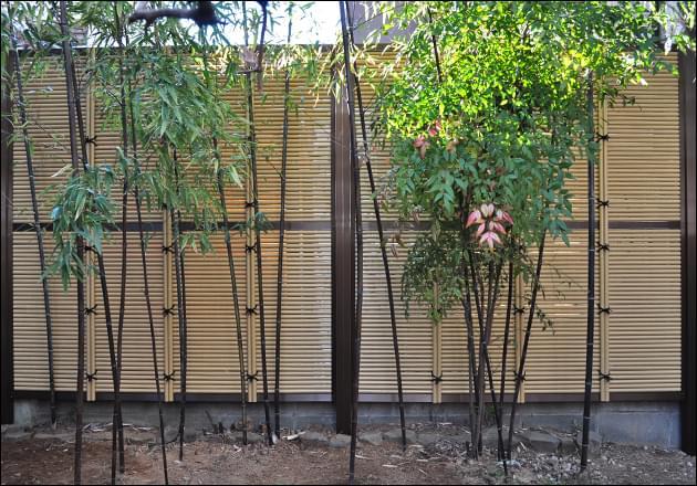 隣地を目隠しする大型の人工竹垣
