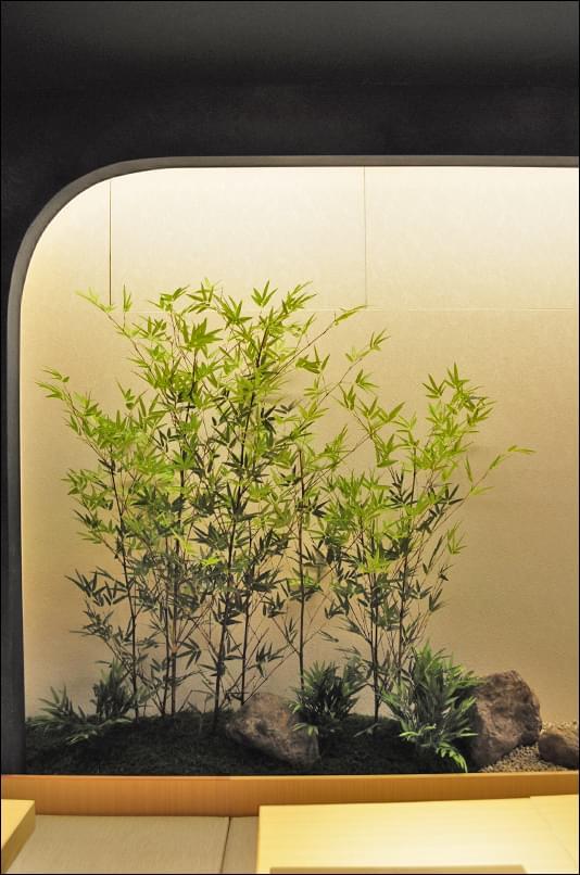 室内での作庭例:新横浜「濱たん」様