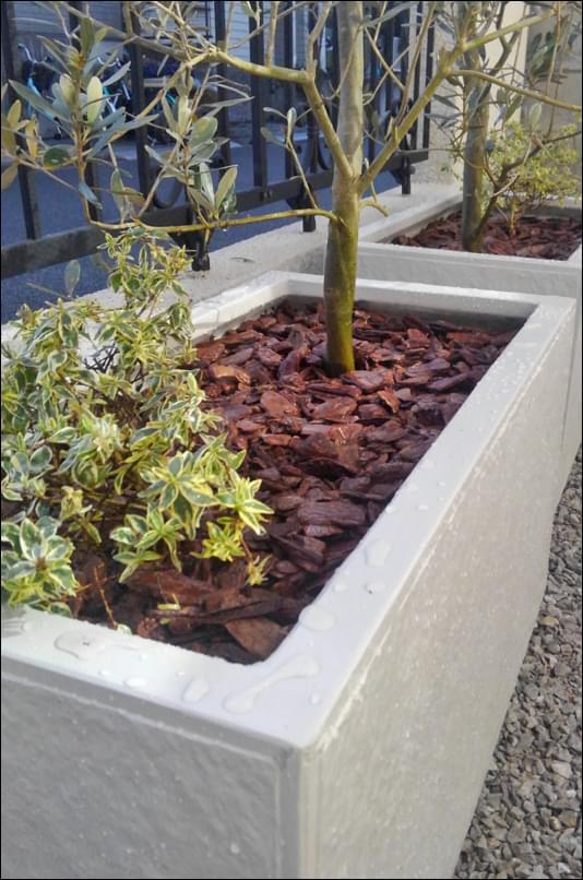 アベリア植栽とバークチップによるマルチング
