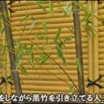 目隠しをしながら黒竹を引き立てる人工竹垣-足立区S様邸