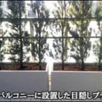 ルーフバルコニーへ目隠しのプランター生垣を-船橋市S様邸