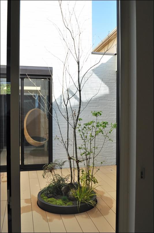 小さな自然感を見せるプランター植栽