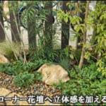 コーナー花壇へ立体感を加える植栽デザイン-流山市I様邸