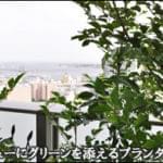 ベイビューのバルコニーに緑を添えるプランター植栽-江東区A様邸