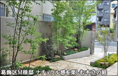 限られた空間で雑木の自然な木立を楽しむ洋風の庭-葛飾区M様邸