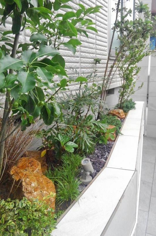 庭石とカラーリーフ、下草が織りなす色彩