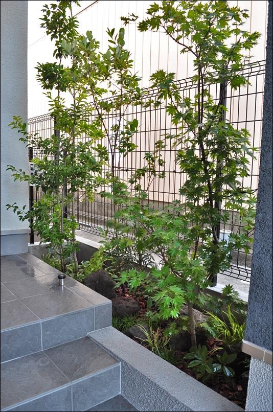 自然な雰囲気を楽しむ植栽と下草、自然石のデザイン