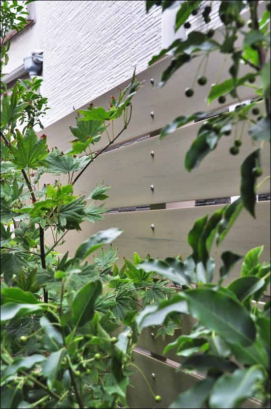 浴室から眺める植栽とフェンスの風景