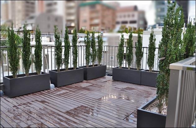 コの字型に設置したプランター植栽