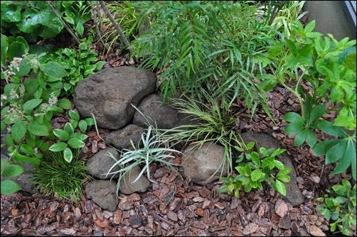 日陰の庭に向く植物38種類とシェードガーデンのデザイン例