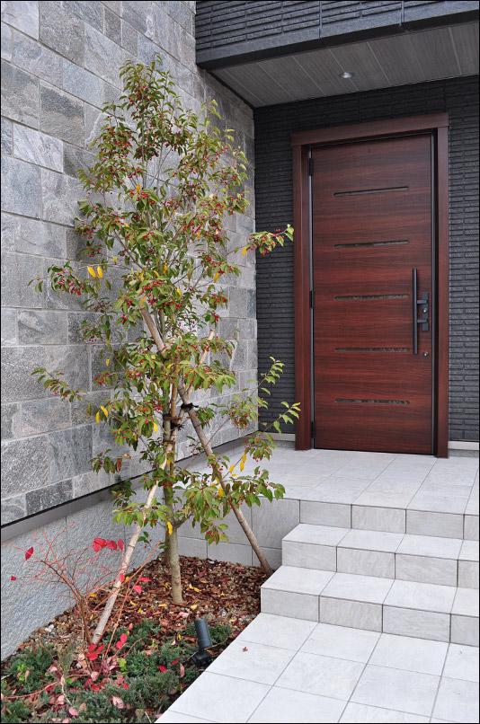 石張り調の外壁と玄関に添えるソヨゴ