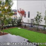 生垣で目隠しする人工芝のプライベートガーデンと玄関周りの植栽デザイン-流山市S様邸