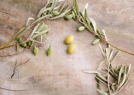 オリーブの実や装飾を楽しむ
