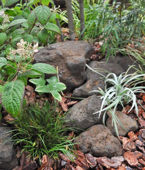 坪庭の「間」を作る庭石