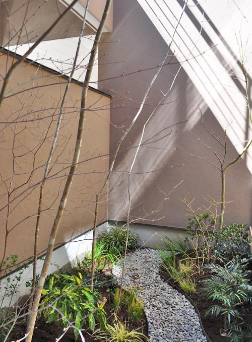 落葉樹をメインに視認性を高めた坪庭