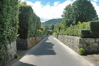 武家屋敷街で見られる、歴史ある生垣