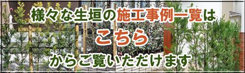 植木による生垣の施工例