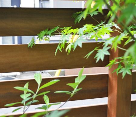 目隠しフェンスで庭木の美しさが増す効果も