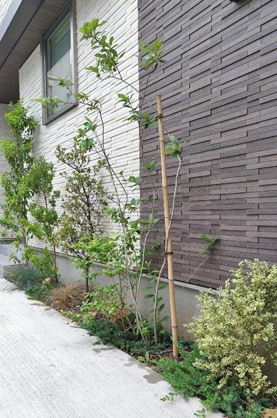 庭木の組み合わせ例:荒川区F様邸