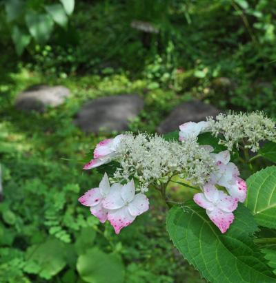 石と花の美しいマッチング