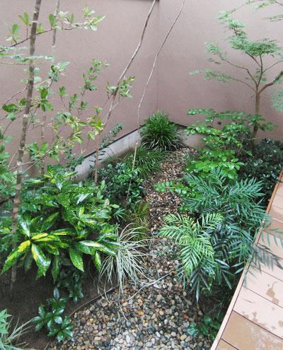 低木で小さな自然群生を表現