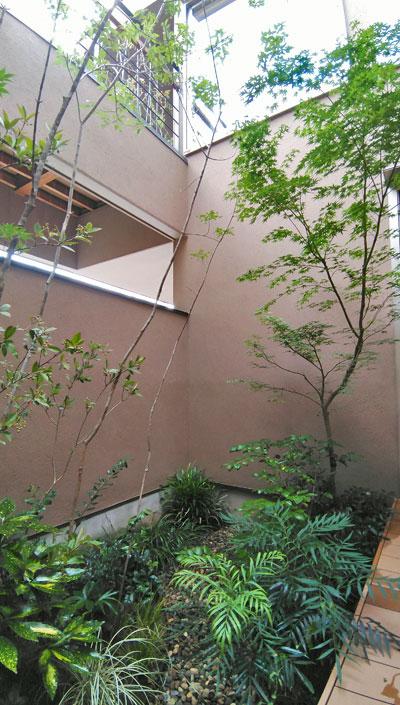 自然な繁茂を楽しむナチュラル坪庭