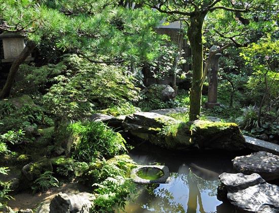 武家屋敷で見る池泉回遊式の庭:金沢にて