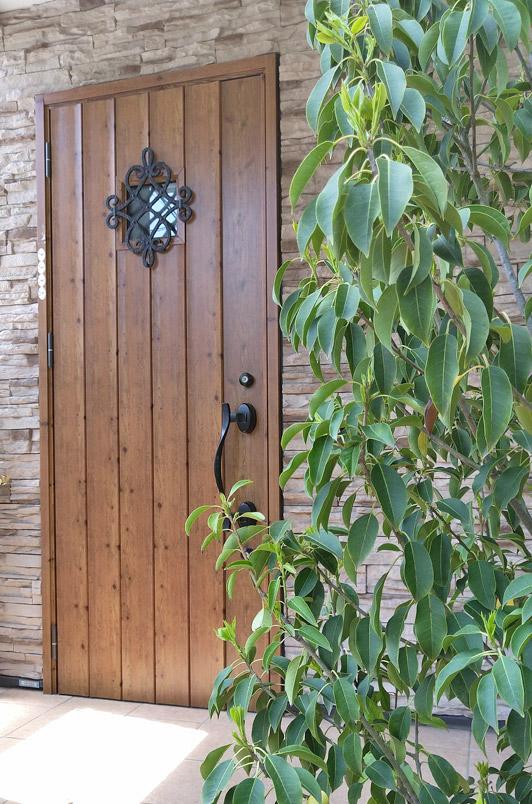 ソヨゴのグリーンと外壁の調和