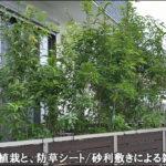 シラカシの目隠し植栽と、砂利敷きによる雑草対策を-さいたま市M様邸